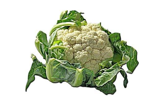 Cauliflower, Kohl, Cheese Cabbage, Flowering Cabbage