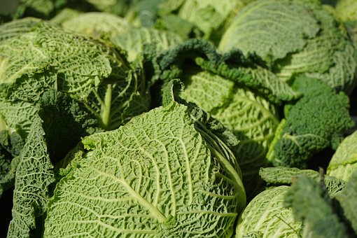 Savoy, Vegetables, Kohl, Healthy, Green, Savoy Cabbage