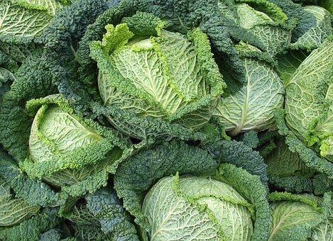 Savoy, Kohl, Vegetables, Welsch Carbonate, Healthy, Eat