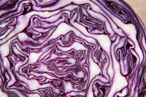 Red Cabbage, Brassica Oleracea, Kohl, Ruebkohl