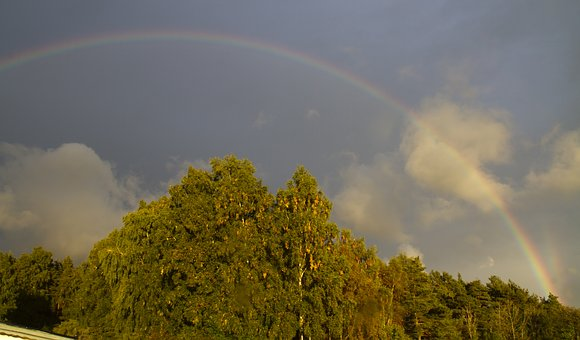 Rain, Rainbow, Colors, Sol