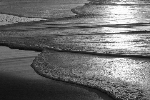 Sticks, Beach, Natural Barrier, Sunset, Blue, Sea