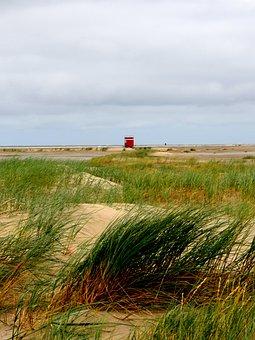 Beach, Dunes, Teen Beach Borkum, North Sea, Sea Grass