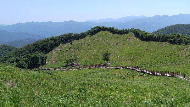 Fame Production, Grass Field, Mountain Lake