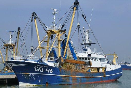 Fishing Boat, Port, Fisheries, Boat, Nets, Quay