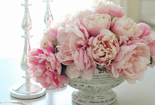Peonies, Peony, Flowers, Pink, Spring, Summer, Bouquet