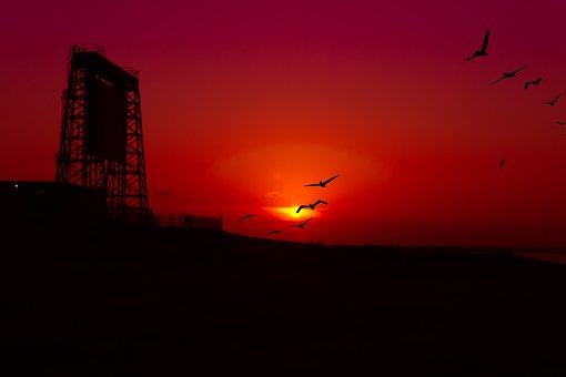 Sunset, Draw Bridge, Coastline, Pelicans, Seagulls
