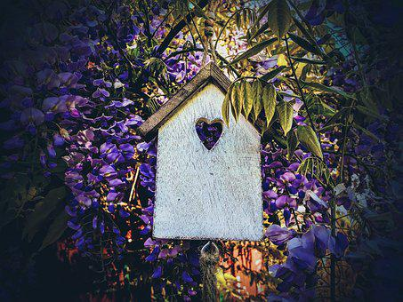 Aviary, Blue Rain, Decoration, Garden, Home, Wood