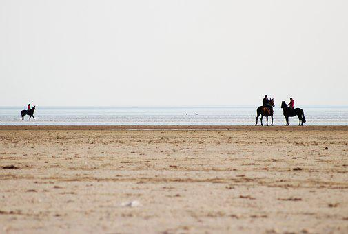 Horses, Beach, Reiter, Nature, More, Water, Ride