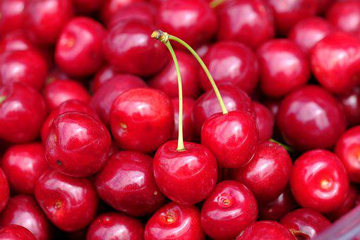 Cherry, Sweet Cherry, Bird Cherry, Prunus Avium, Stalk