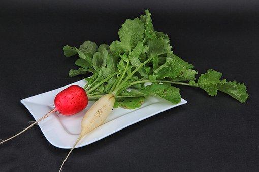 Radishes, Harvest, Vegetables, Salad, Radish, Raw Food