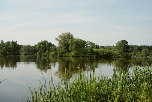 Landscape, Water, Lake, Lagoon, Tree, Forest, Nature