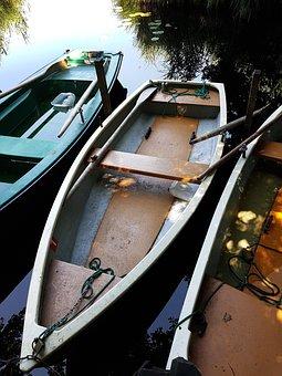 Paddle Boat, Lake, Boat, Water, Sport, Leisure, Nature