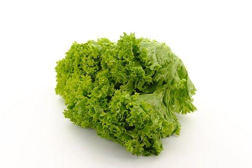 Salad, Leaf Lettuce, Lettuce, Lamb's Lettuce