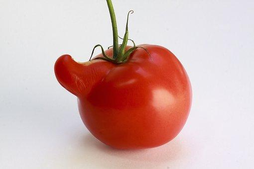 Tomato, Red, Vegetables, Nachtschattengewächs, Food
