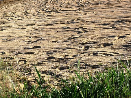 Footprints, Sand, Water Nature, Prints