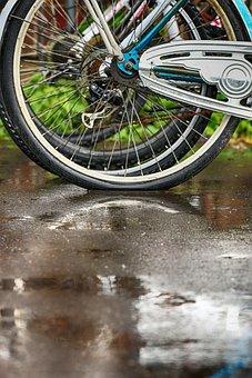 Bike, Wheel, Cycle