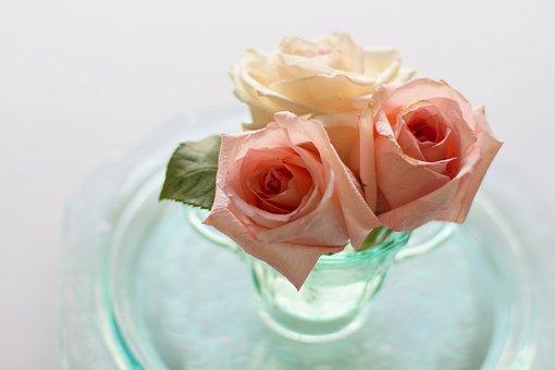Roses, Flowers, Vintage, Floral, Bouquet, Dishes