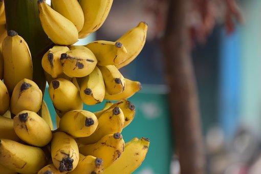 Banana, Fruit, India, Health, Dieting