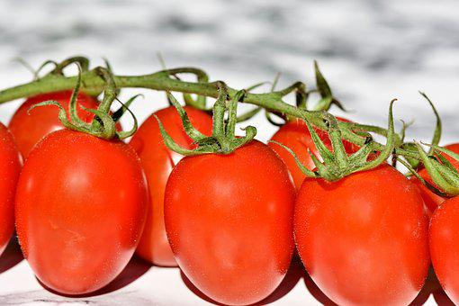 Tomatoes, Trusses, Bush Tomatoes, Vegetables, Healthy