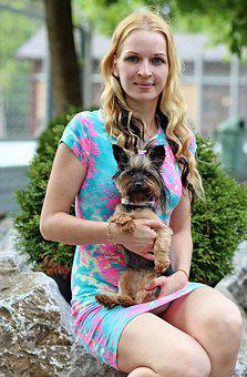Yorkshire Terrier, Dog, Friendship, Love, Hug