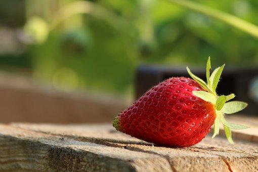 Strawberry, Mature, Fruit, Red, Fetus, Summer, Garden