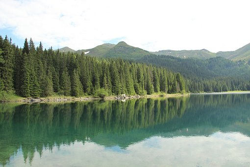 Lake, Mountains, Water, Nature, Trees, Country, Pleso