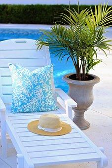 Chaise, Palm, Patio, Pool, Summer, Sunshine, Back Yard