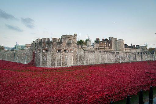 Tower Of London, Remembrance, November, Poppies, Poppy