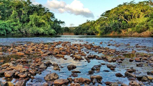 River, Rocks, Water, Belize, Jungle, Tropical, Blue