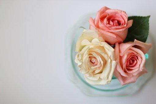 Roses, Flowers, Vintage, Background, Floral, Bouquet