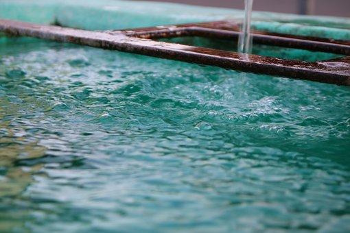 Water, Summer, Refreshment, Pond, Refresh, Fountain