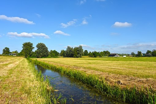 Field, Grass, Water, Ditch, Rural, Countryside