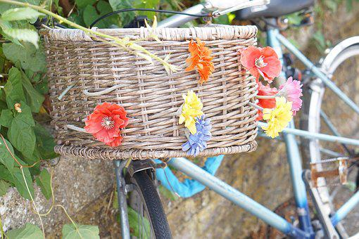 Bicycle, Basket, Flowers, Bike, Cycling, Biking