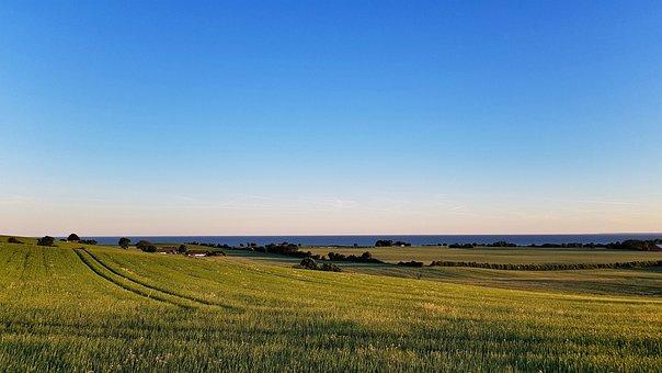 Denmark, Landscape, Blue, Water, Sea, Field, Meadow