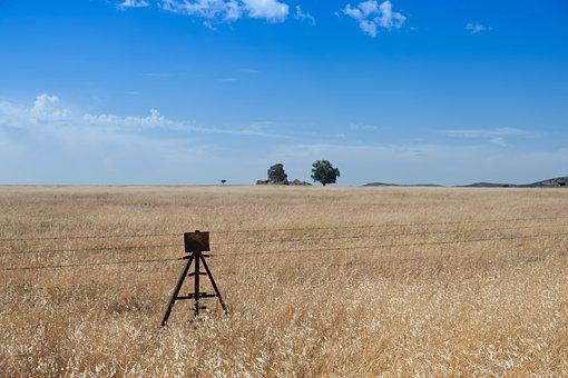 Wired, Rusty, Oxide, Ruin, Field, Dry Land, Dry