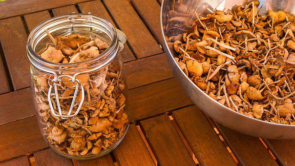 Mushrooms, Canned, Harvest