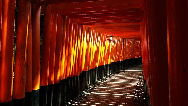 Japanese, Fushimi Inari, Shrine, Travel, Kyoto, Light