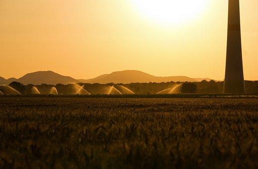 Sunset, Back Light, Irrigation, Pinwheel, Dazzle, Sun