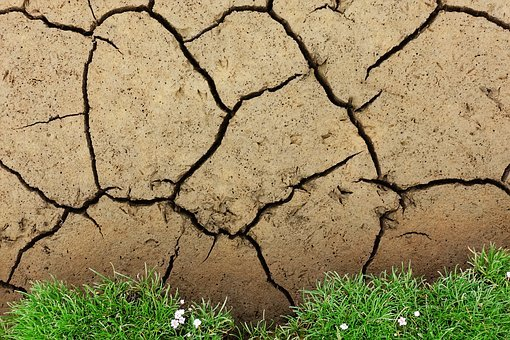 Mud, Cracked, Drought, Soil, Ground, Dry, Crack
