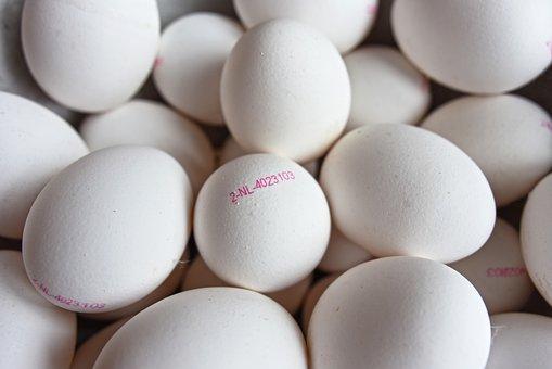 Egg, Egg Stamp, Egg Mark, Egg Code