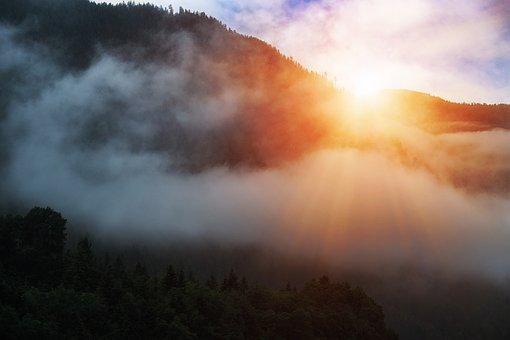 Clouds, Fog, Sun, Light, Forest, Landscape, Alpine