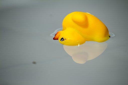 Water, Mirroring, Reflection, Mood, Waters, Duck, Pool