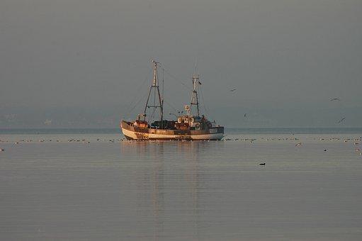 Baltic Sea, Sea, Water, Fishing Vessel, Boat, Fishing
