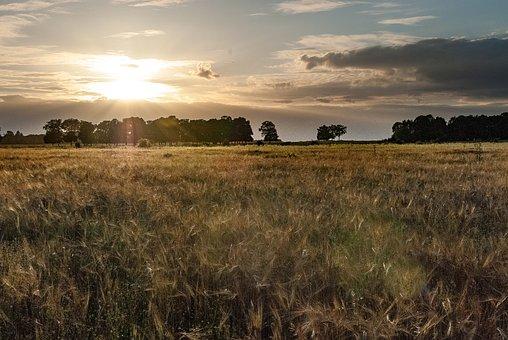 Sunset, Twilight, Sky, Nature, Evening, Landscape