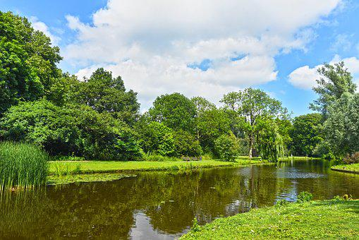 Water, Pond, Trees, Banks, Park, Landscape, Green
