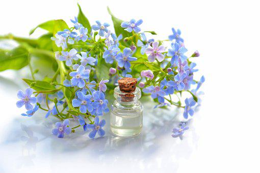 Cosmetic Oil, Essential Oil, Cosmetology, Forget-me-not