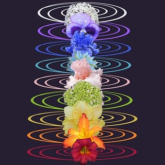 Chakras, Rainbow, Chakra, New Age, Symbol, Yoga, Crown