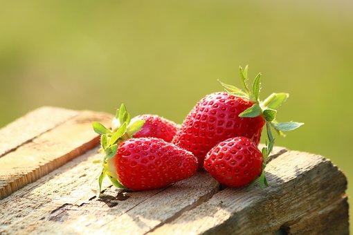 Strawberries, Fruit, Mature, Garden, Cultivation