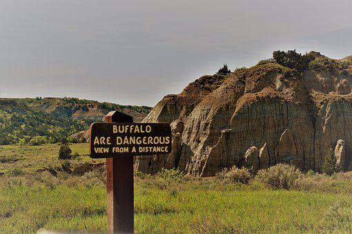 Warning, Danger, Buffalo, Badlands, North Dakota